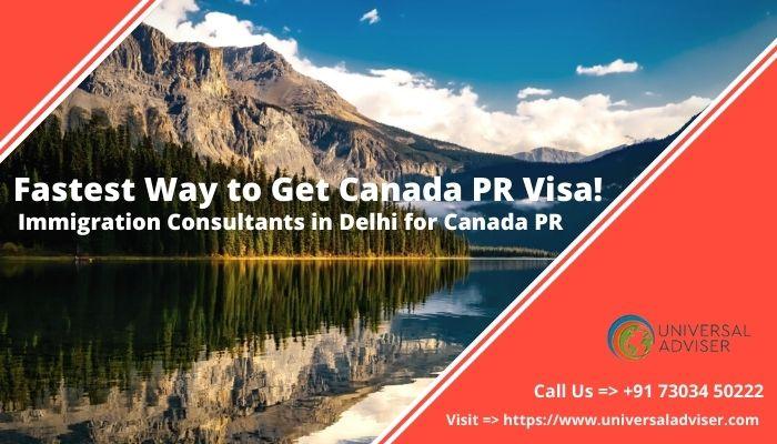 Immigration consultant in Delhi